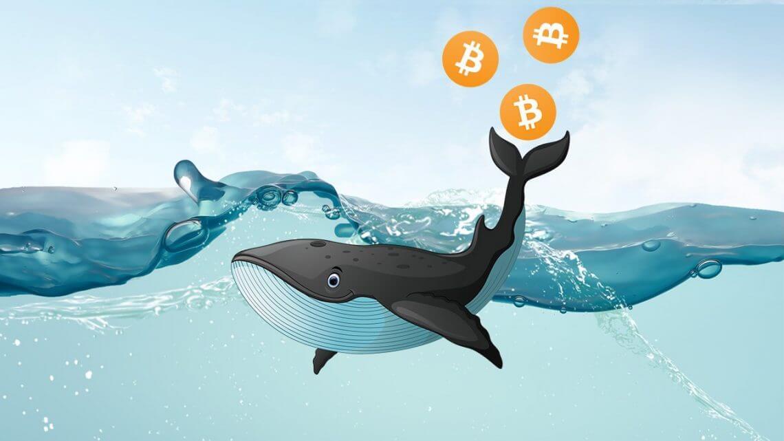 Bitcoin Balinalari BTC lerini satiyor mu Yatirimcilar Piyasa ile Nasil Oynuyor