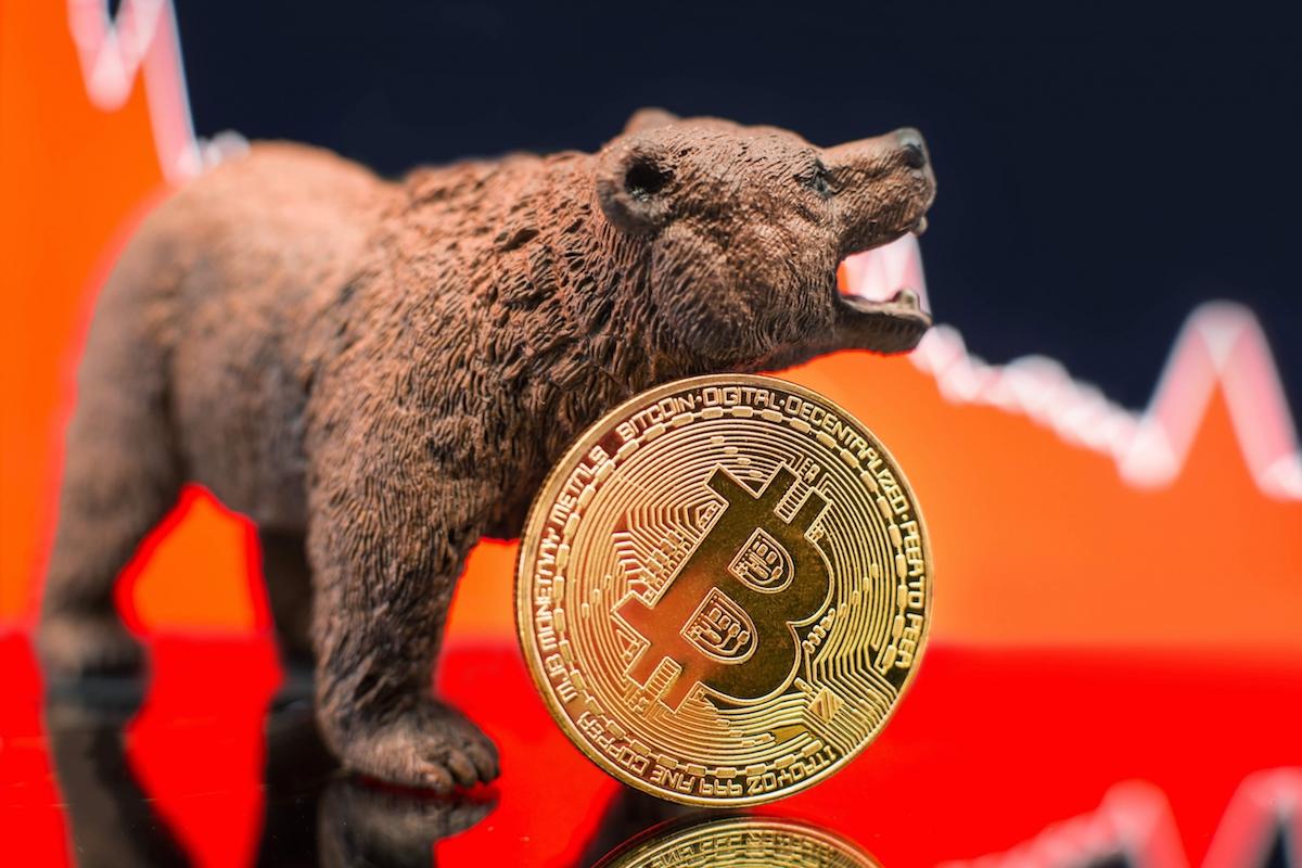 bitcoin ayi