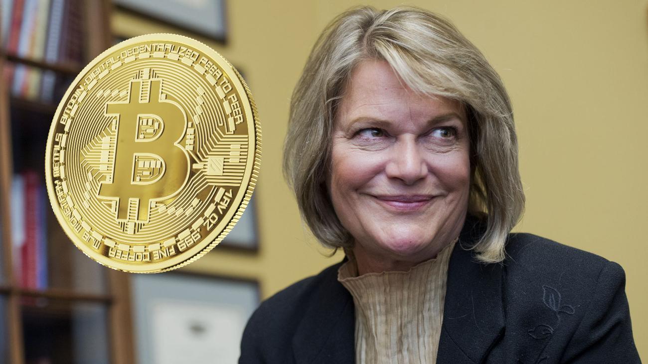 bitcoin senator