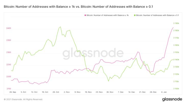 bitcoin btc balinalari btc satin almaya devam ediyor 2