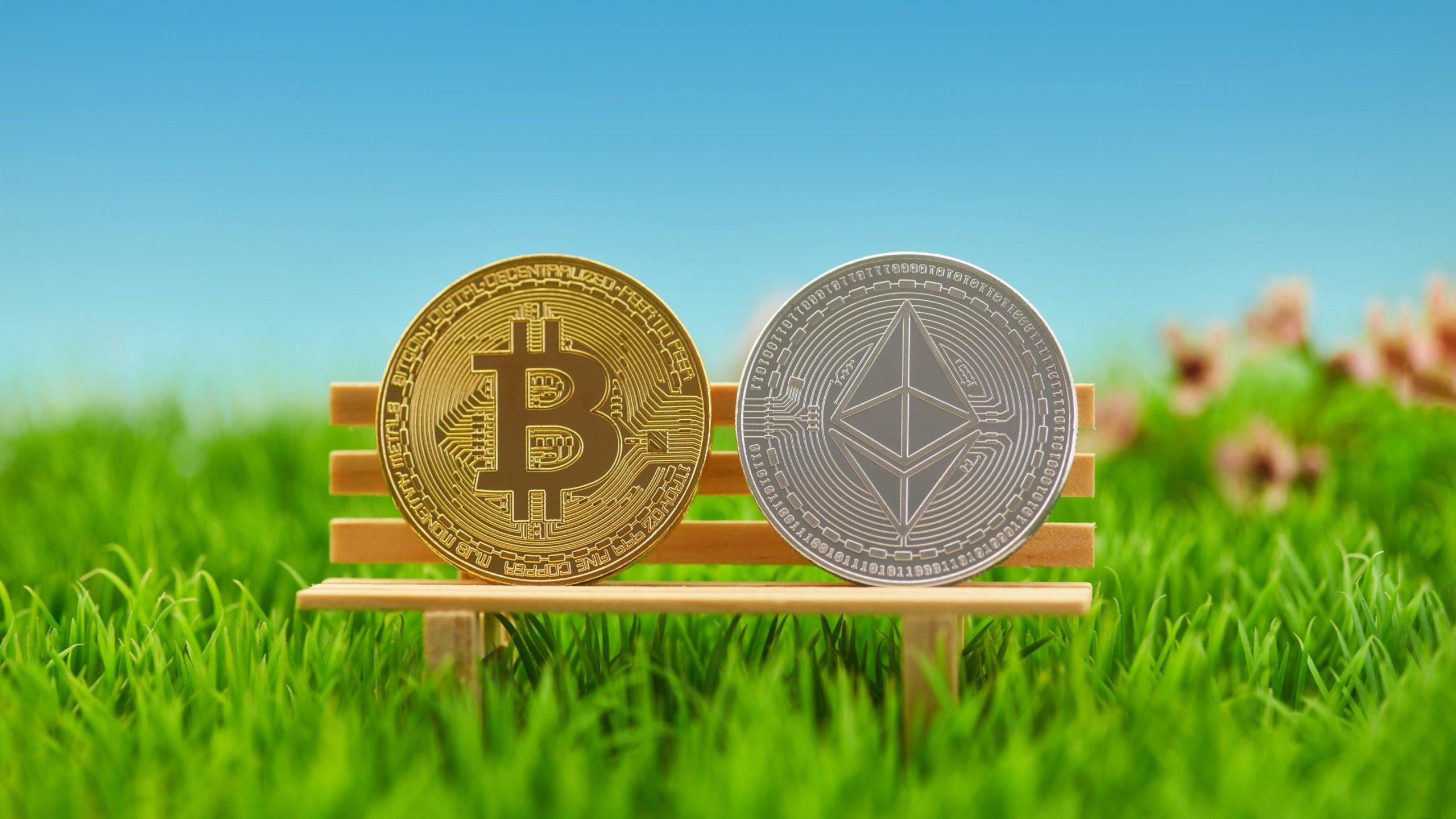 ekonomiste gore ethereum eth bitcoin btc rallisini taklit ederek 20 000 dolara ulasabilir