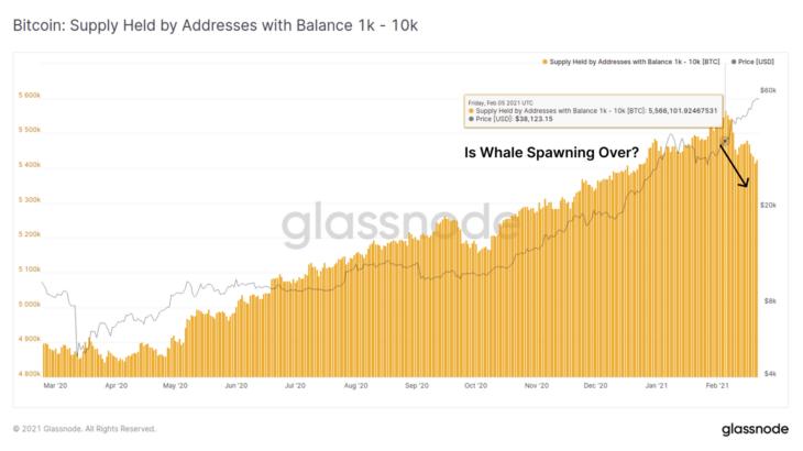 bitcoin balinalari subat ayinda en az 140 000 btc satti
