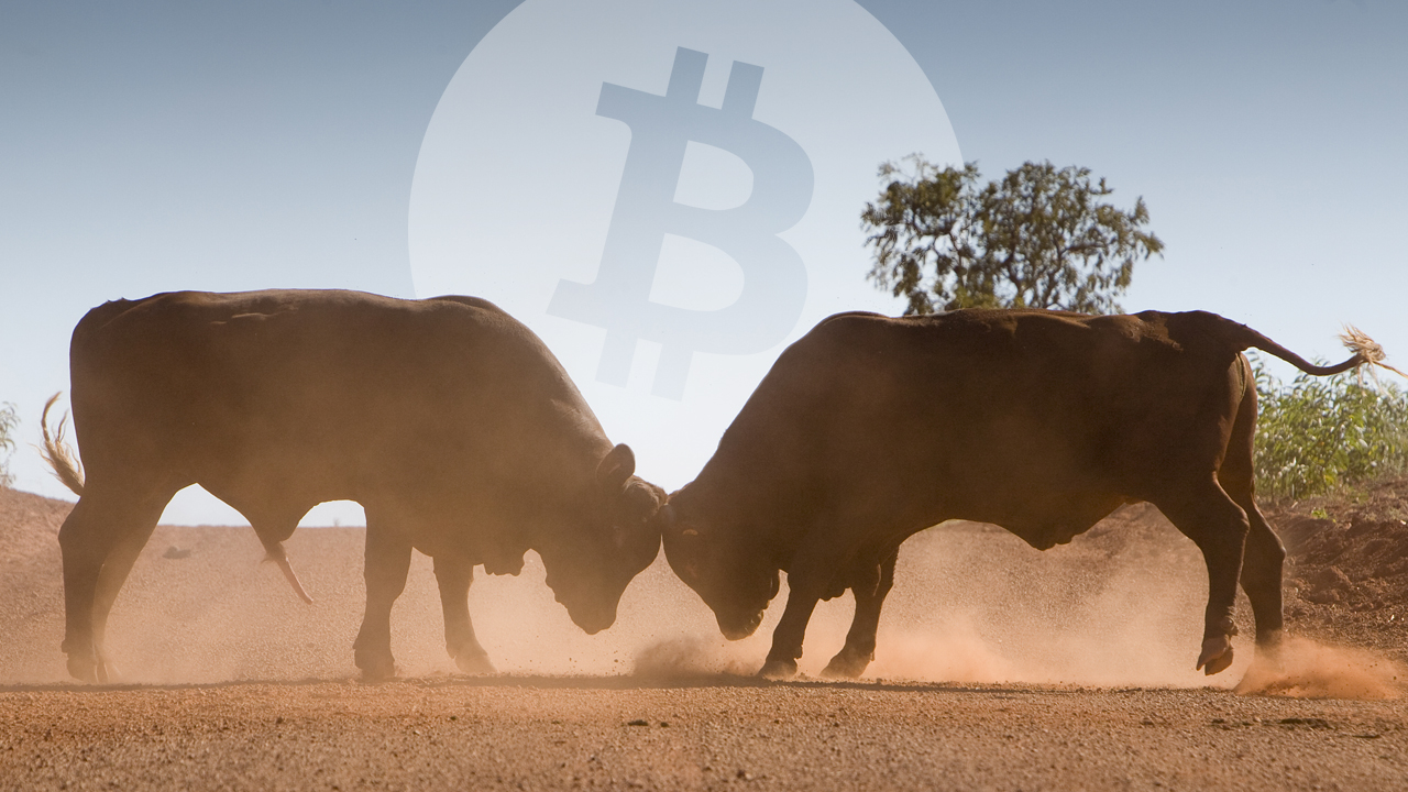bitcoin boga