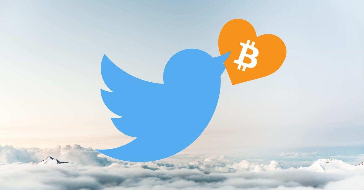 twitter cfosu sirket rezervlerine bitcoin btc ekleme durumunu degerlendiriyor