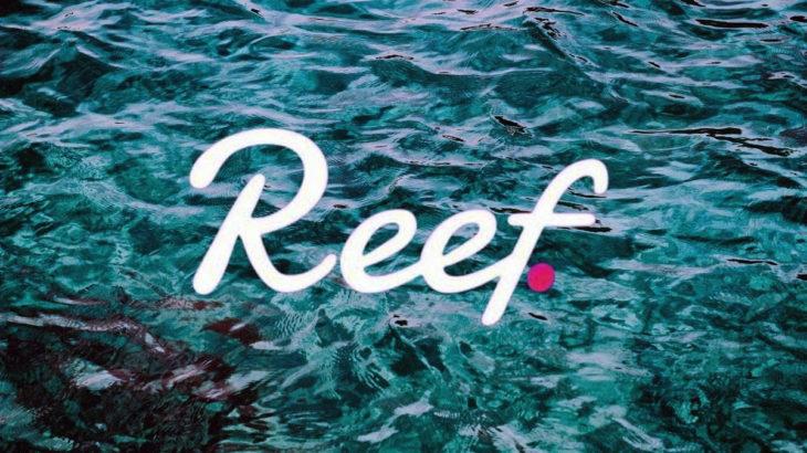 Reef aciklama