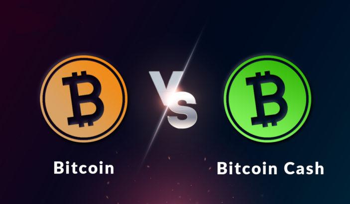 bitcoin cash elon musk