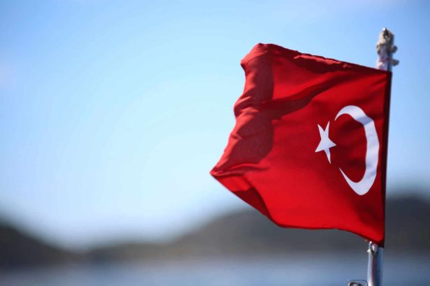 history meaning turkish flag