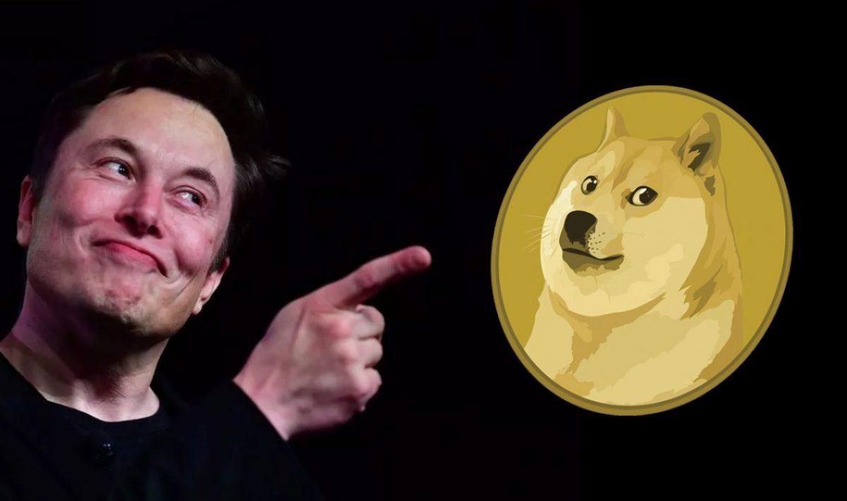 doge 2