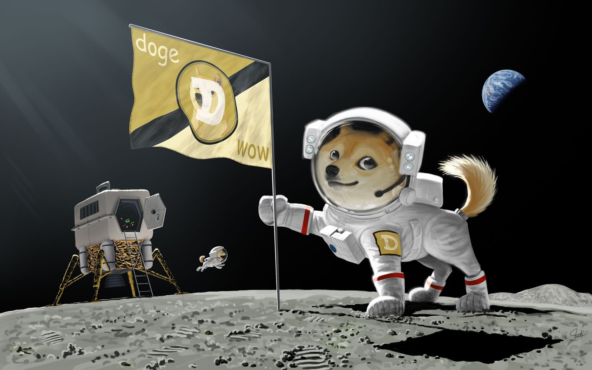 doge spacex