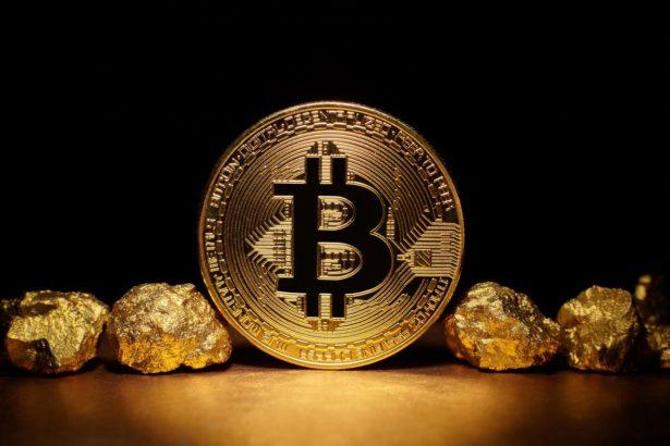 bitcoin vs gold 1