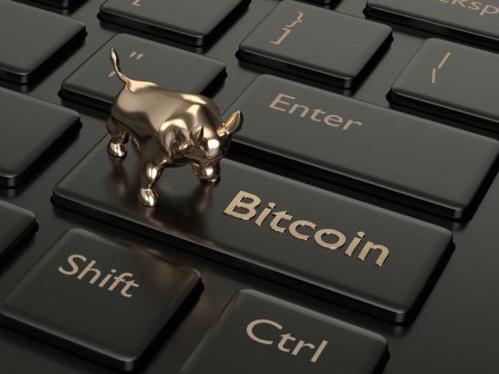 bitcoin shirt tasfiye