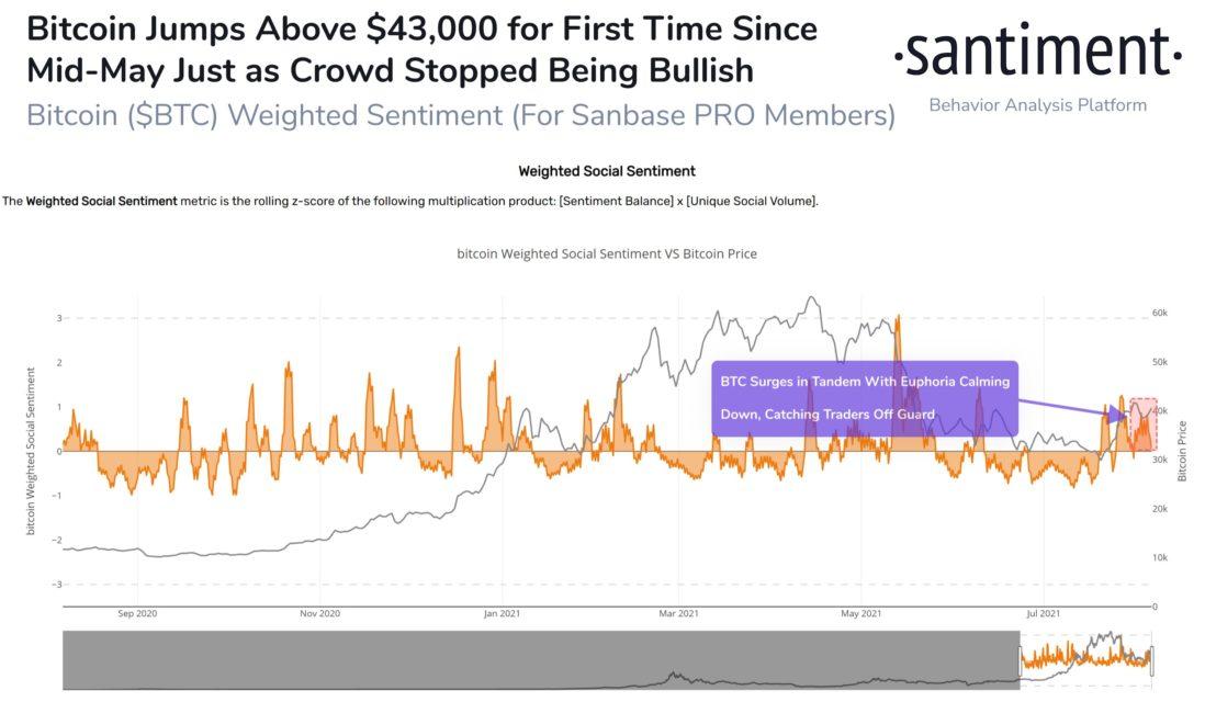 bitcoin btc balinalari harekete gecti bitcoin milyonerleri yeni bir ath belirlemek uzere 2