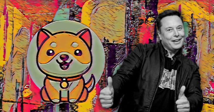 meme tokenlari dogecoin doge baby doge babydoge ve safe moon safemoon korkunc gunler geciriyor