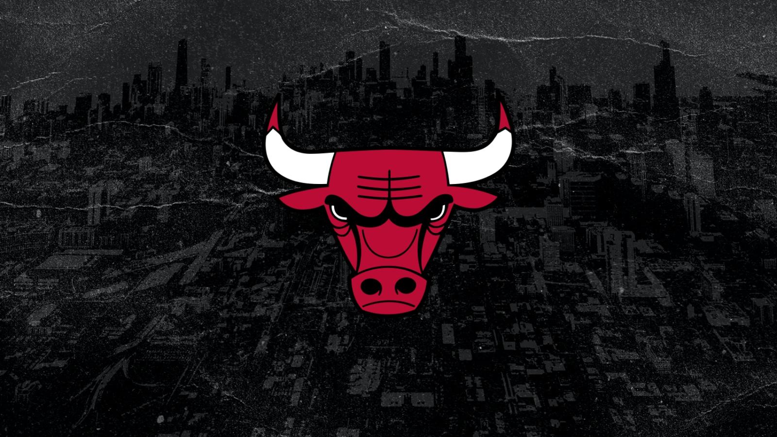socios Chicago Bulls