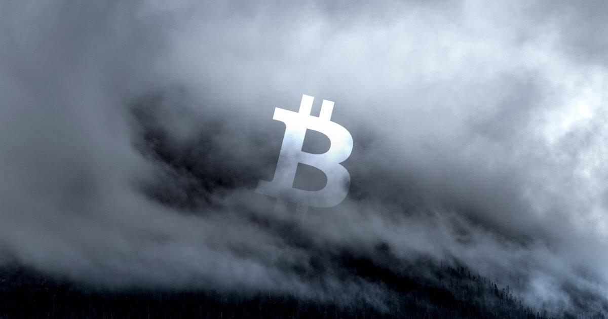 sert dususun ardindan karli bitcoin btc cuzdanlarinin orani yuzde 70e dustu